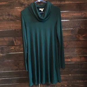 Fall turtleneck dress